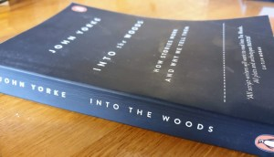 Book Recommendation: Into The Woods by John Yorke