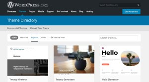 The Best WordPress Themes for Author Websites