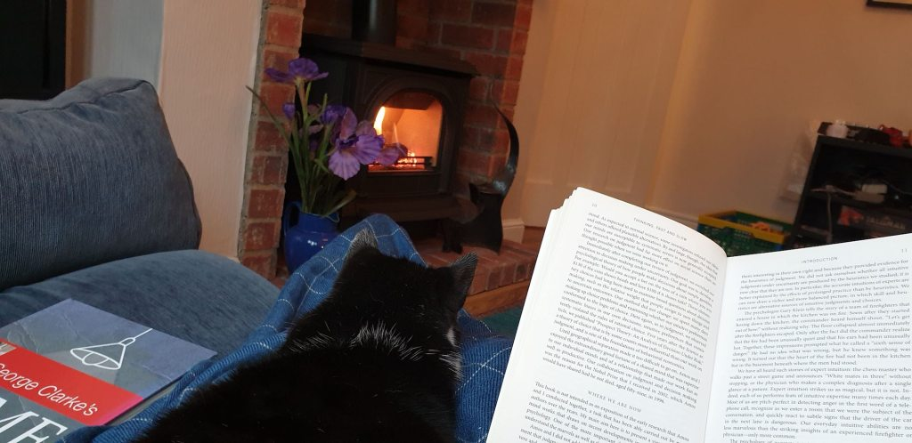 reading with a cat in front of a sorting fire