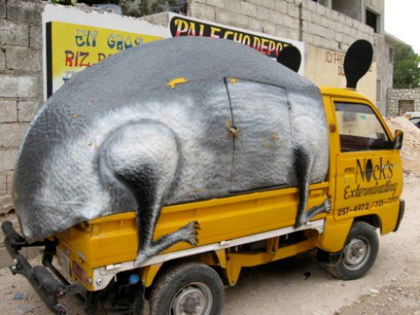 rat car