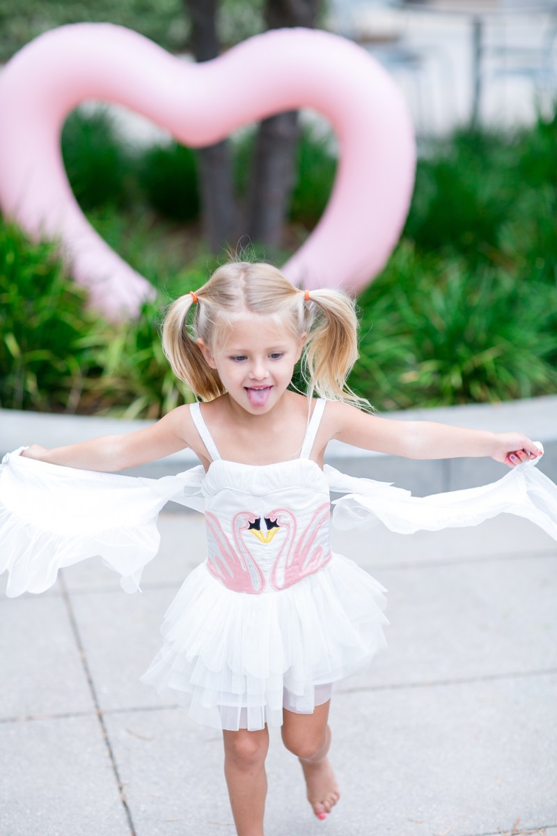 b20875f3cec3b Swans are one of the hottest trends for Fall, and I have the down-low on  where to get the cutest toddler dresses, purses, ...