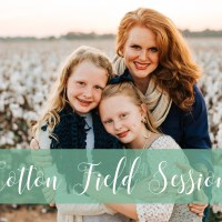It's Time for Cotton Field Sessions