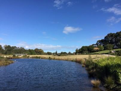 Sydney Park 7