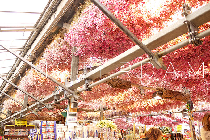 Amsterdam: The flower market