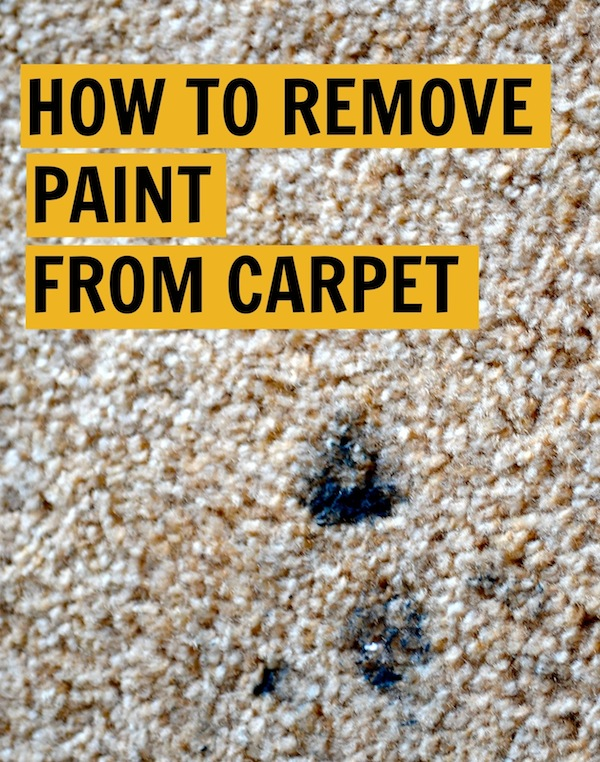 Image Result For How Do You Get Dry Nail Polish Out Of Carpet