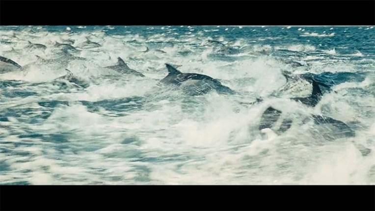 oceans9