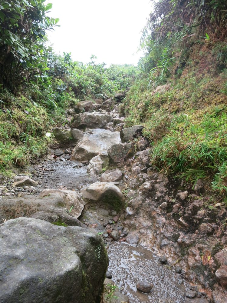 a view of a rocky part of the path up La Soufriere volcano in Guadeloupe
