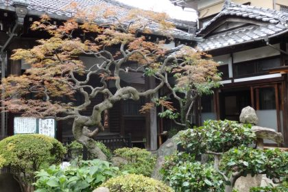 a manicured garden fronts one of many Yanaka temples