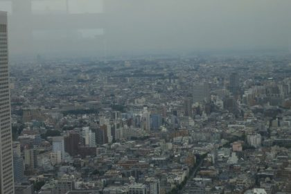 general urban sprawl as seen from Tokyo City Hall