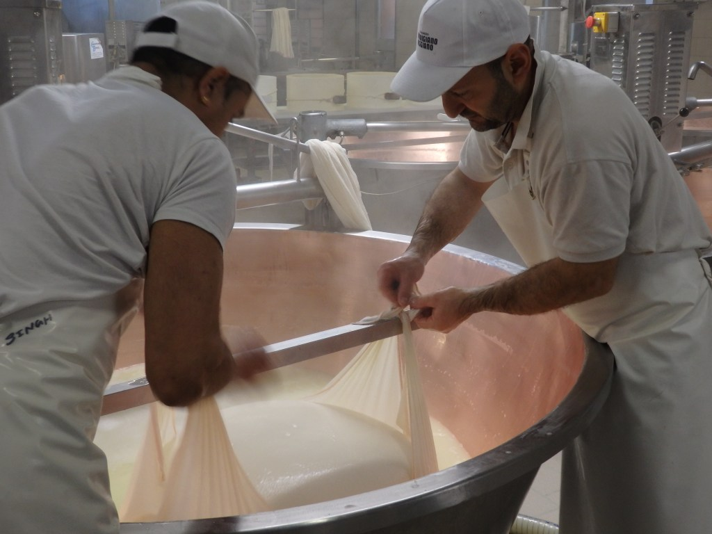 Workers wrap the lump of curds in a net. Italian Days Food Tour.