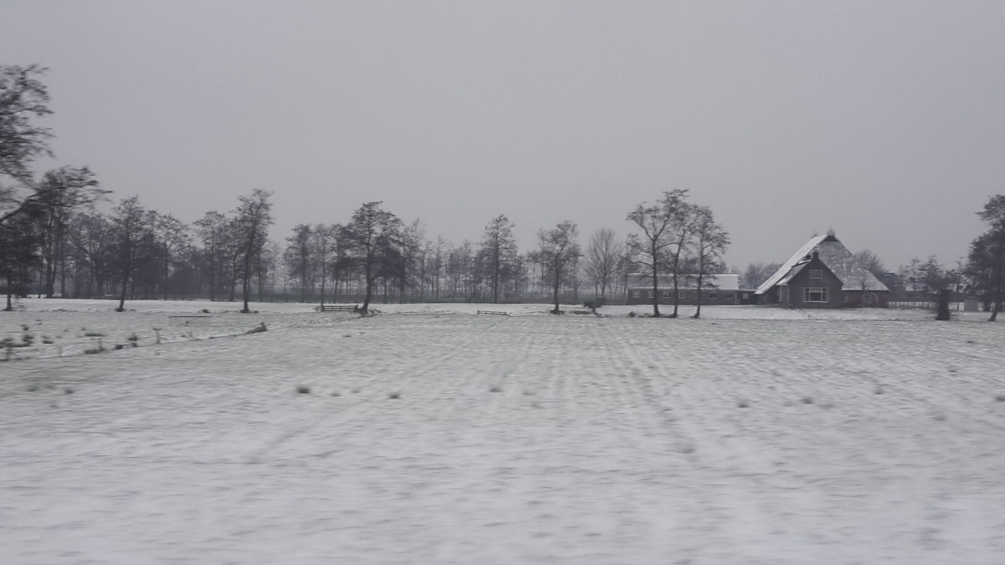 somewhere on my commute between Groningen and Leeuwarden after a dusting of snow