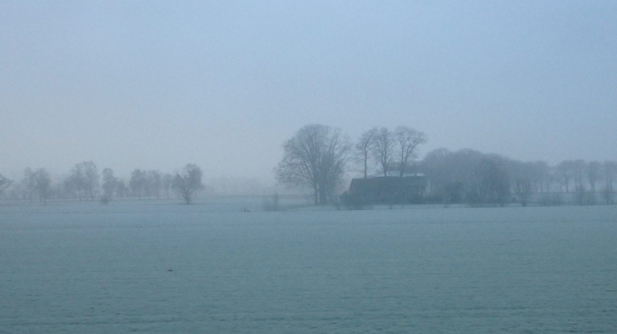 a farm on a frosty day, seen during my commute to Leeuwarden