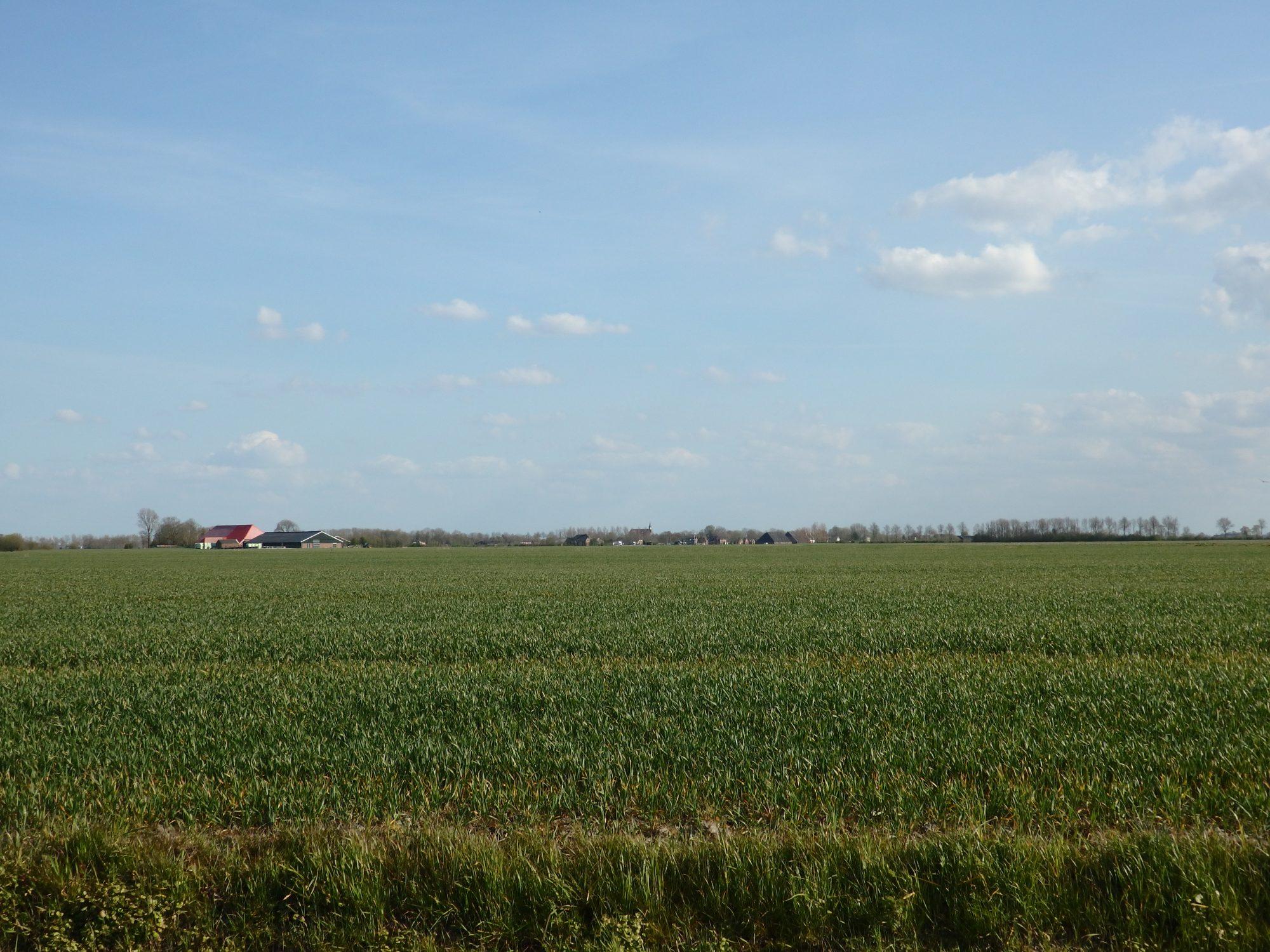 Big sky, flat land: typical Groningen province scenery