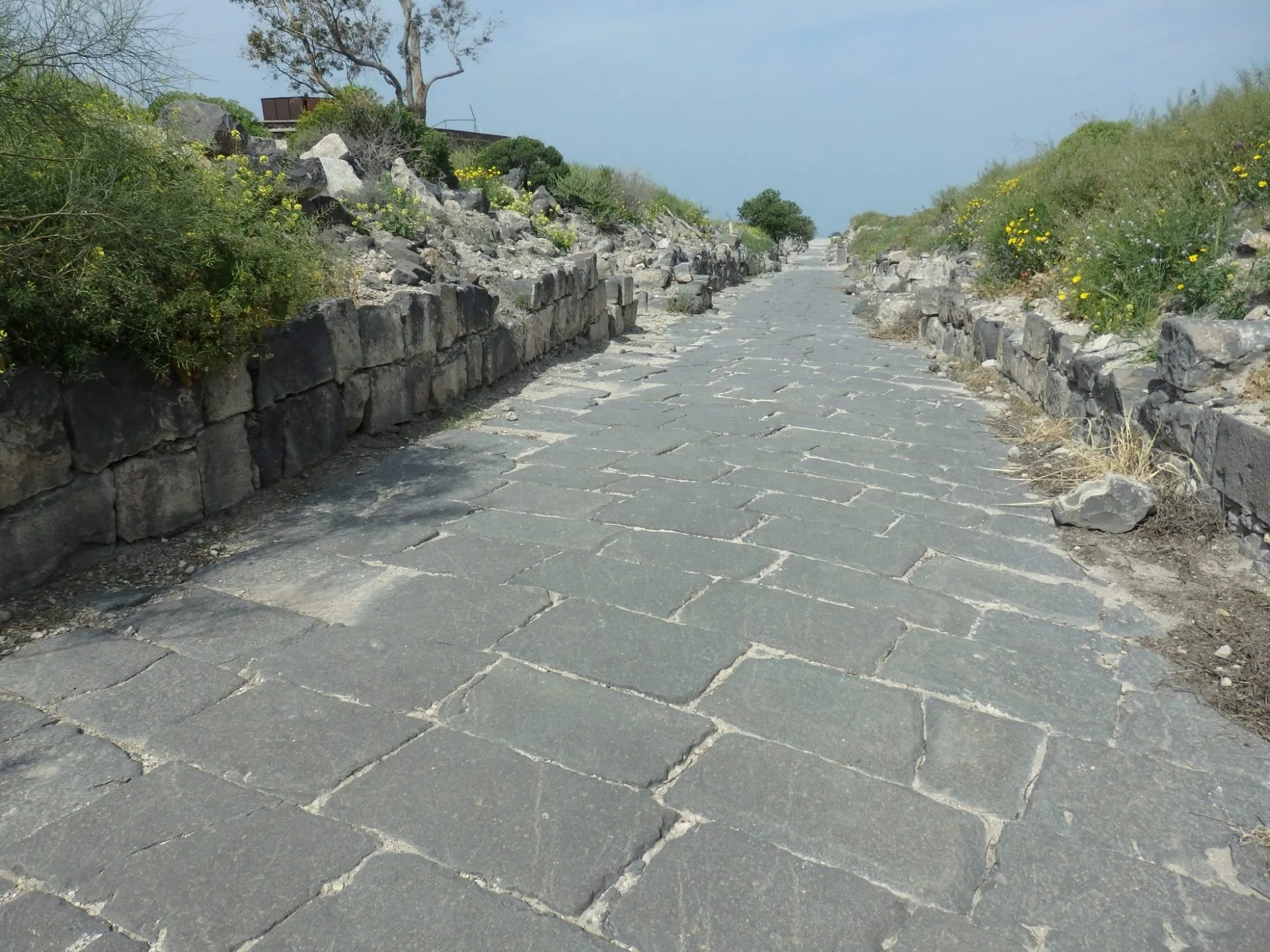 The main street of Susita was called the decumanus maximus.