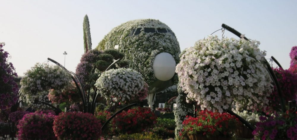 Our first glimpse of the A380 in Dubai Miracle Garden.
