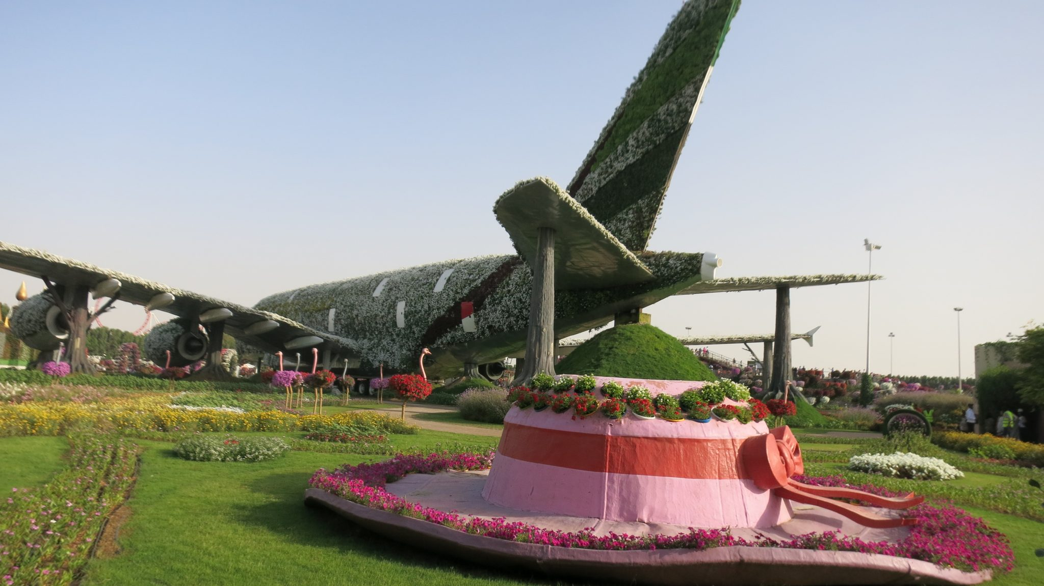 The A380 with its row of ostriches and a hat, in Dubai Miracle Garden.