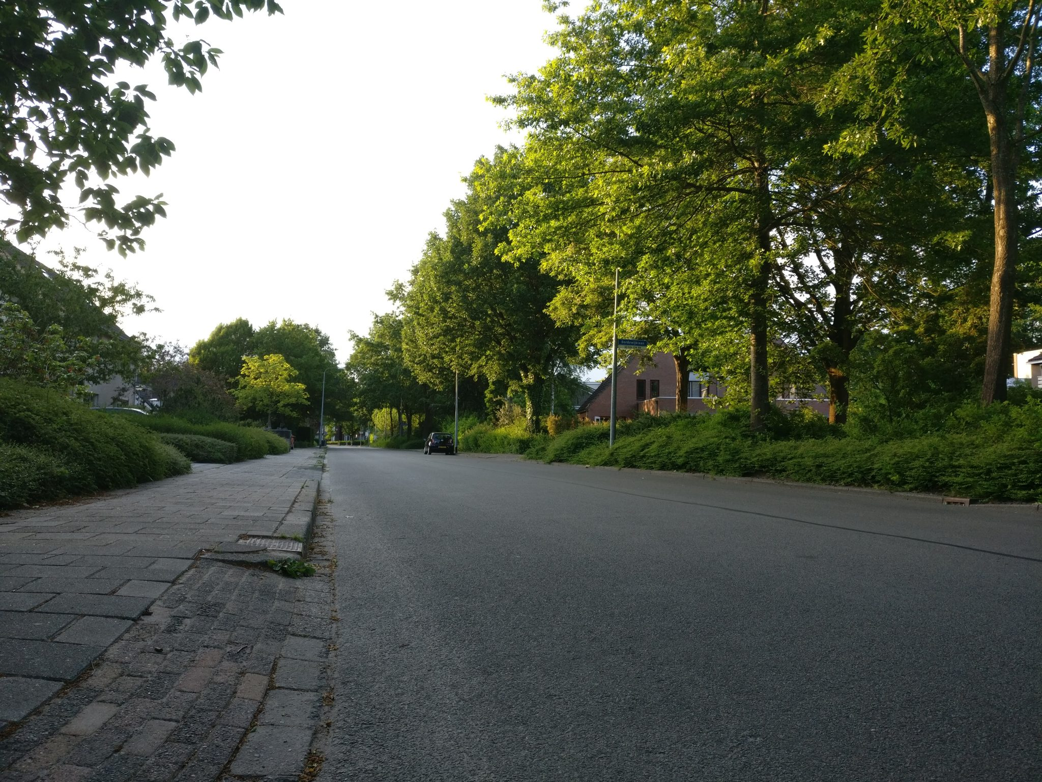 Our well-paved, quiet street