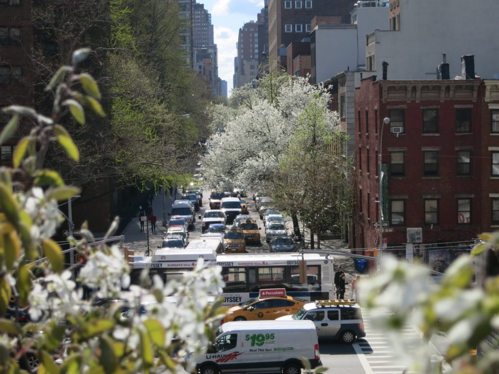 New York City traffic in the springtime, as seen from High Line Park