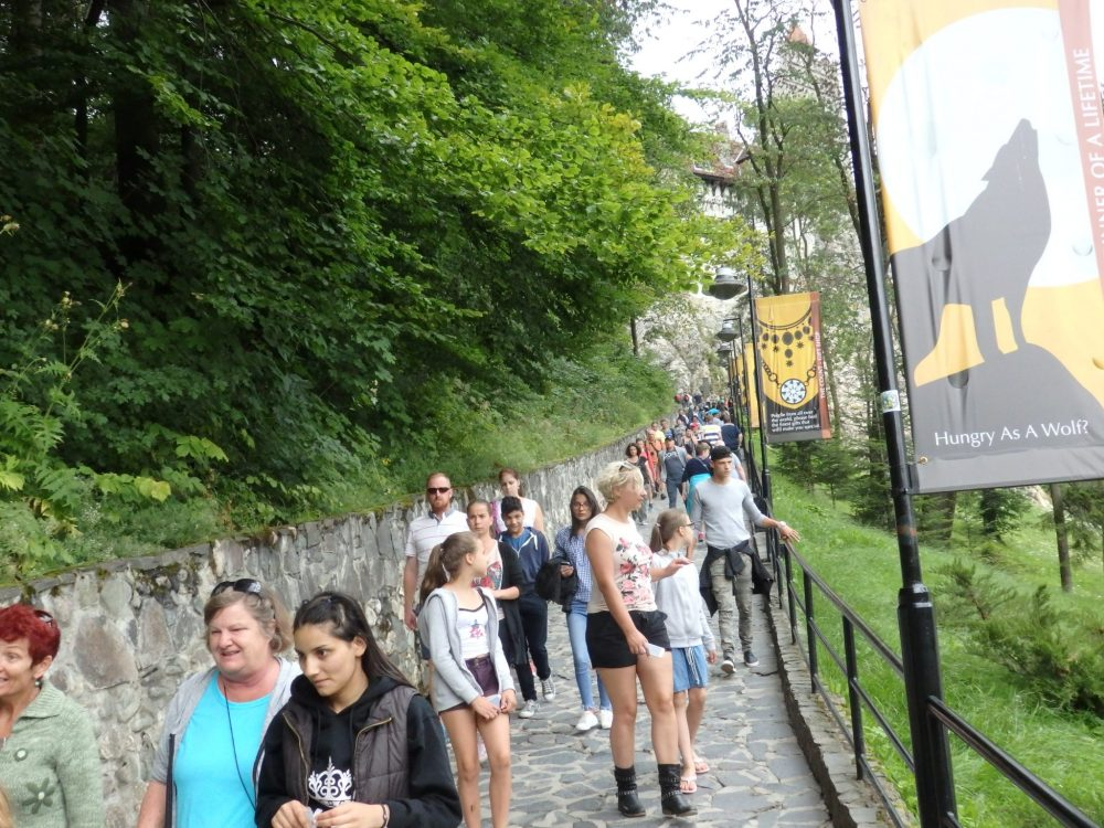 The path up towards Bran Castle, which you can see in the distance. Should you visit Dracula's Castle?