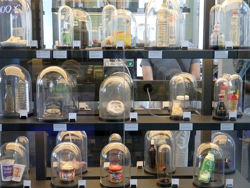 a display case with labeled jars of rotting food at Micropia. In this view three rows are visible, each with 5 bell-jars. Some of the items inside are recognizable, e.g. a bottle of soy sauce, but some are not.
