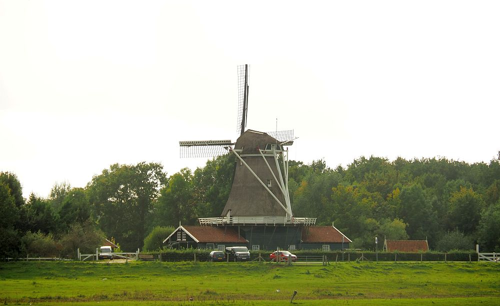 A classic Dutch windmill. There are no sails on the vanes so it's not turning. It's a large type of several stories tall, with a top piece that can be rotated to face the wind. It has two houses attached on either side, and a balcony at its bottom at the height of the houses' roof.