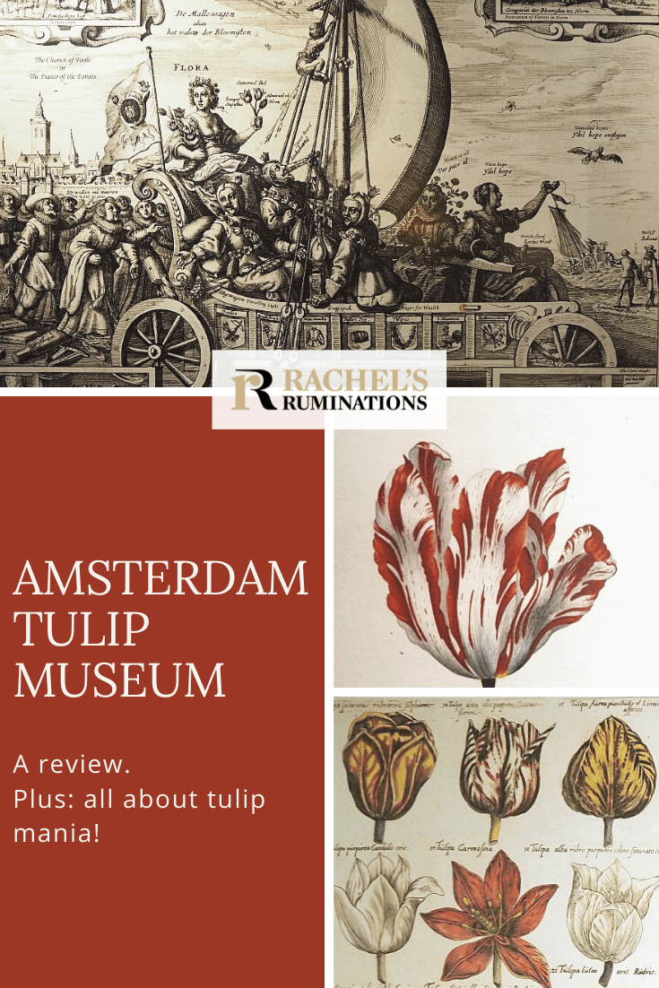 The Amsterdam Tulip Museum is surprisingly interesting, especially when it tells the story of the tulip mania: the Dutch bulb-buying bubble that burst. #Amsterdam #tulips #tulipmania #Holland via @rachelsruminations