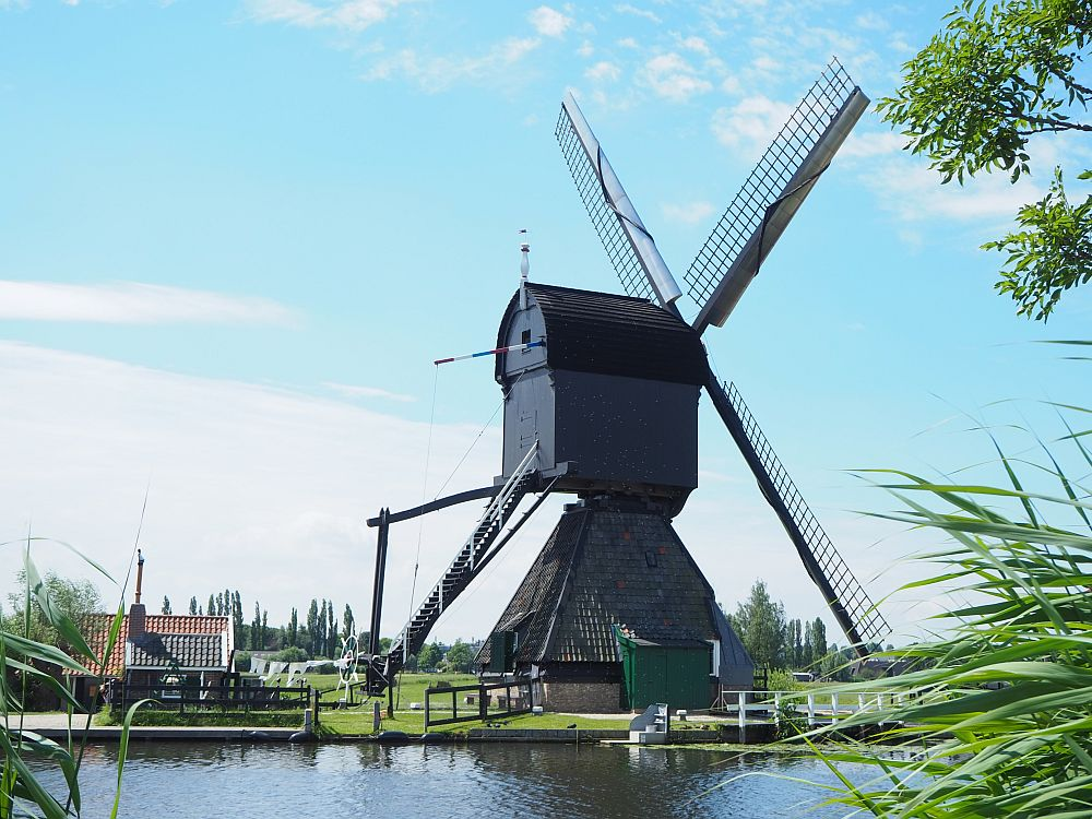 This kind of windmill is shaped differently than the other. The base is like a house, but with a very high, steep roof. Perched on top is the windmill, shaped a bit like a square barn with a sloped roof. This part can rotate, while the bottom part sits on the ground. the windvanes are on the right side of the upper part in this view.