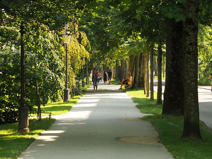 Looking down a wide, paved walking path, neat rows of green trees on either side, and a row of old-fashioned street lamps on the left. People visible walking on the path in the distance.