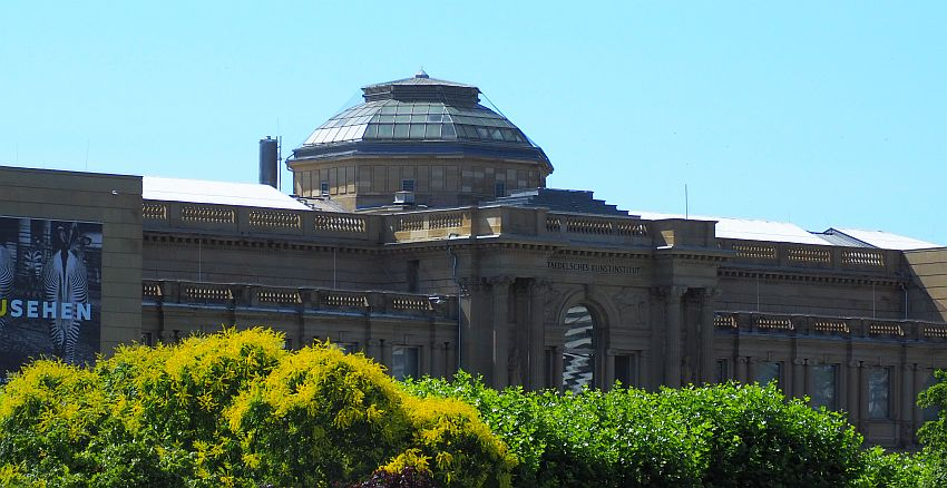 A classical-style building that looks quite palace-like. Dark stone, with pillars framing the entrance and all of the windows as well. A dome rises above the rest of the building.