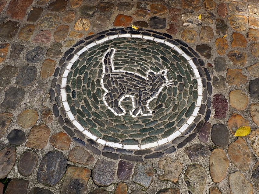 The stones of the mosaic are smaller than the stone of the pavement around it, and they are arranged in concentric circles, except the white stones that form the outline of a cat.