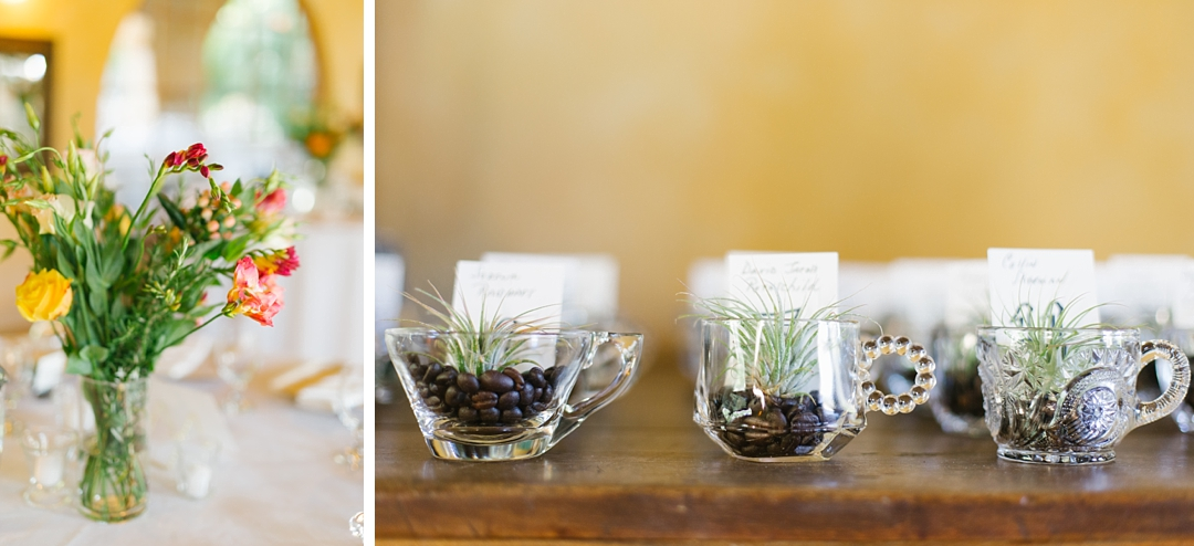 espresso beans and air plants as party favors