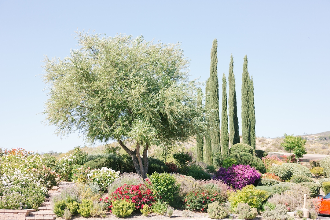 gorgeous flowers and scenery from this temecula venue