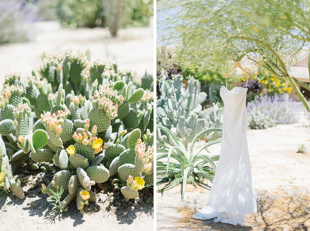 bride's dress hanging on tree in temecula with cacti