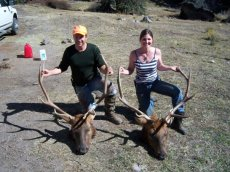 2007, my first elk and my first trip.