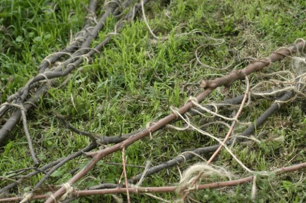 Embracing chaos: my crazy garden. | Clean. www.lusaorganics.typepad.com
