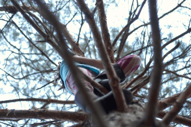 Because soon they will me follow me high into the branches of whatever trees I climb. | www.lusaorganics.typepad.com