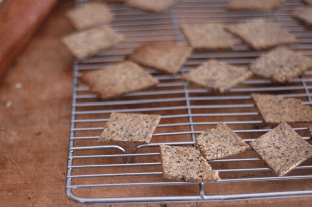 gluten-free, grain-free cracker recipes| Clean. www.lusaorganics.typepad.com