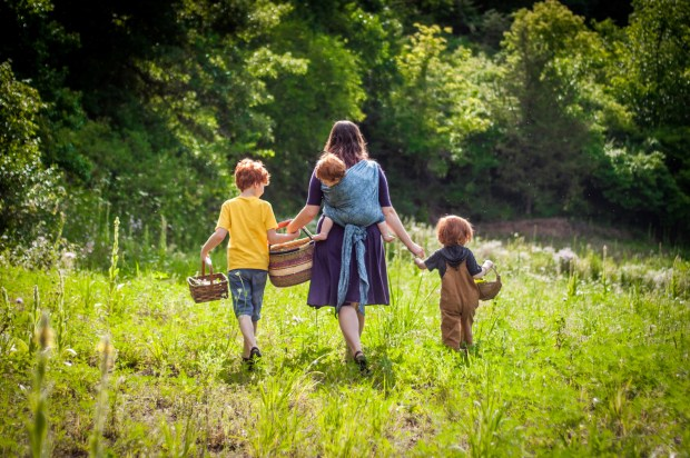 Herbal Adventures by Rachel Jepson Wolf - Backyard Excursions and Kitchen Creations for Kids and Their Families #herbs #herbal #herbalism