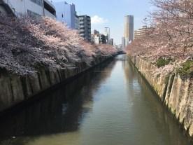 Nakameguro River