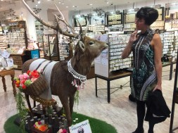 Contemplating this bejeweled deer