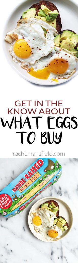 vital-farms-eggs