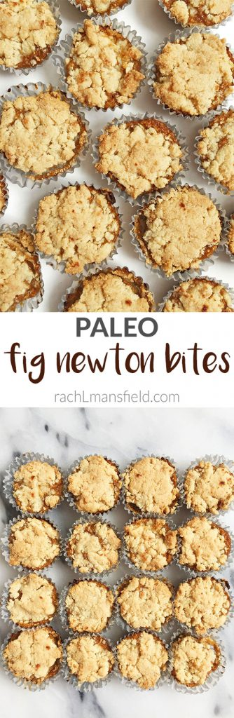 Paleo Fig Newton Bites made with less than 8 ingredients