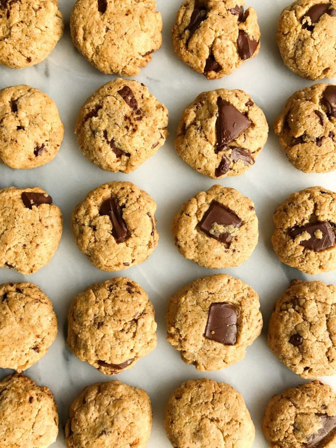 Chocolate Chunk Tahini Cookies that are grain-free and vegan-friendly!