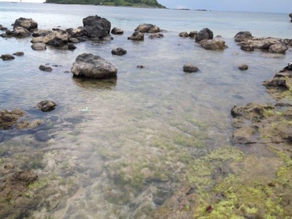 Indahnya Pantai Kertasari yang menjadi sentra penanaman rumput laut bagi warga #newmontbootcamp