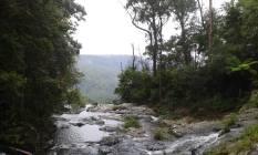 At the top of Purlingbrook Falls