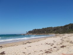 Shelly Beach with the headland in view