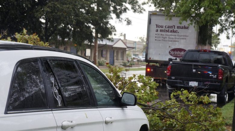 The driver of this Steinhafel's truck struck the branches of a tree, which hit this white car at about 11:40 a.m. Tuesday, Aug. 8 on West Boulevard just south of Washington Avenue.