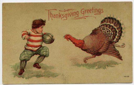 Thanksgiving wild turkeys