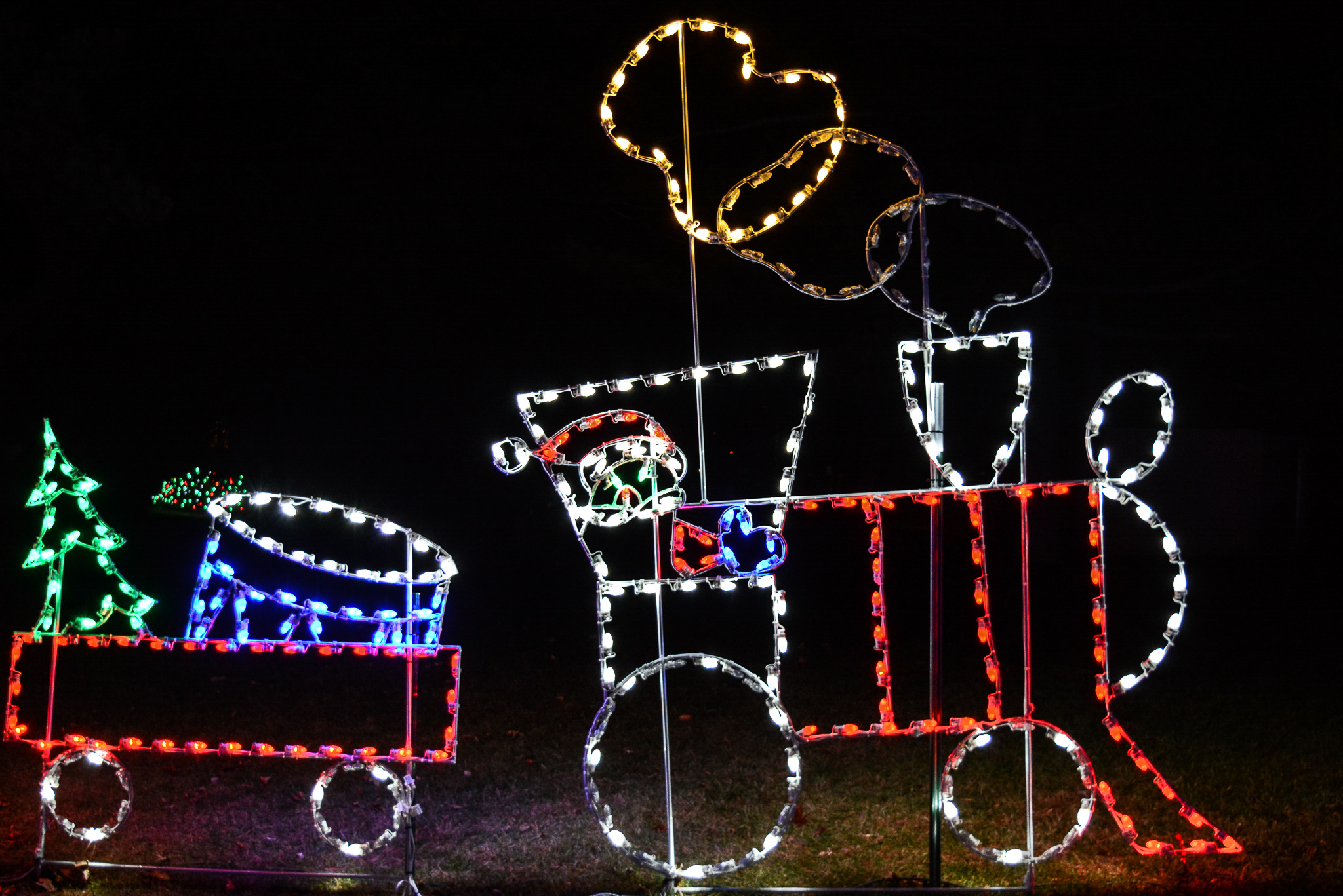 Racine Zoo Wonderland of Lights