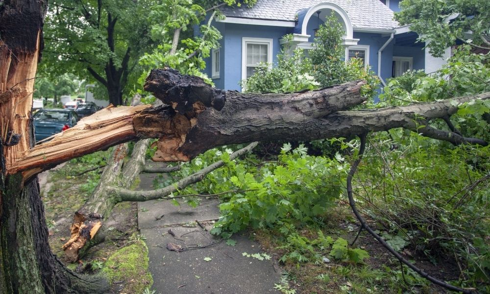 Best Ways To Protect Your Home from Storm Damage
